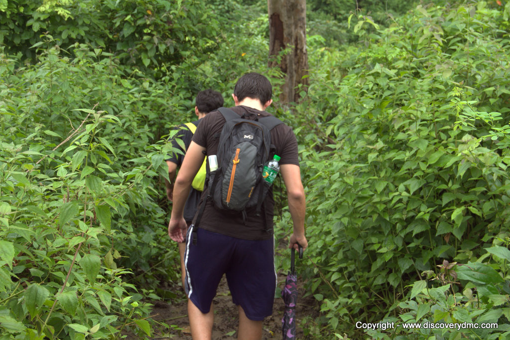 Jungle trek at Pho Kyar camp